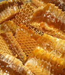 Sáp ong rừng nguyên chất