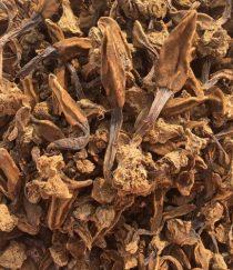 Nấm ngọc cẩu khô nguyên búp